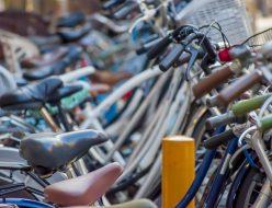 平坦で自転車で生活しやすい南加瀬