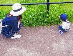 南加瀬の子育て環境と通勤事情